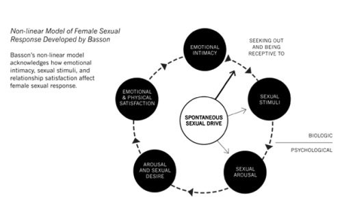 Rosemary Basson's model of female sexual response