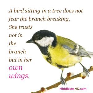 MiddlesexMD_Bird